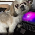 Dr Max writing his blog.